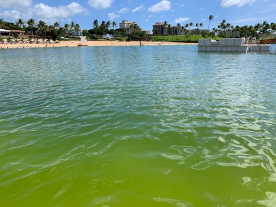 koolina lagoon 1