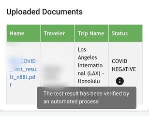 covid19 negative